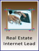 real estate internet-lead